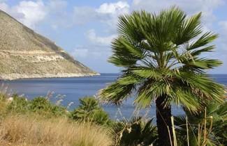 Photo 1 - Villa Punta Pispisa