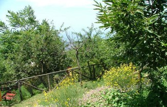 Foto 1 - Agriturismo La Ginestra