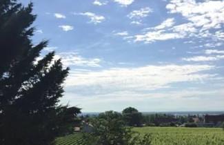 Photo 1 - Le Vigneron au coeur de Ribeauvillé