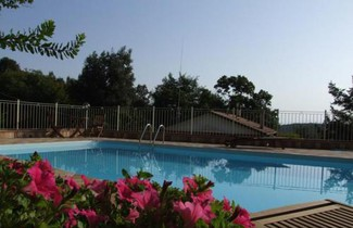 Photo 1 - Apartment in Sassetta with private pool