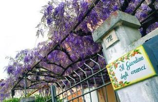 Foto 1 - Orange Garden