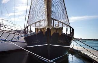 Foto 1 - Boat in Venice with terrace