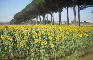 Photo 1 - Agriturismo Pantano Borghese