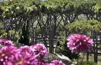 Photo 1 - Veneto