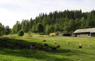Photo 1 - Landhof Steinhütte